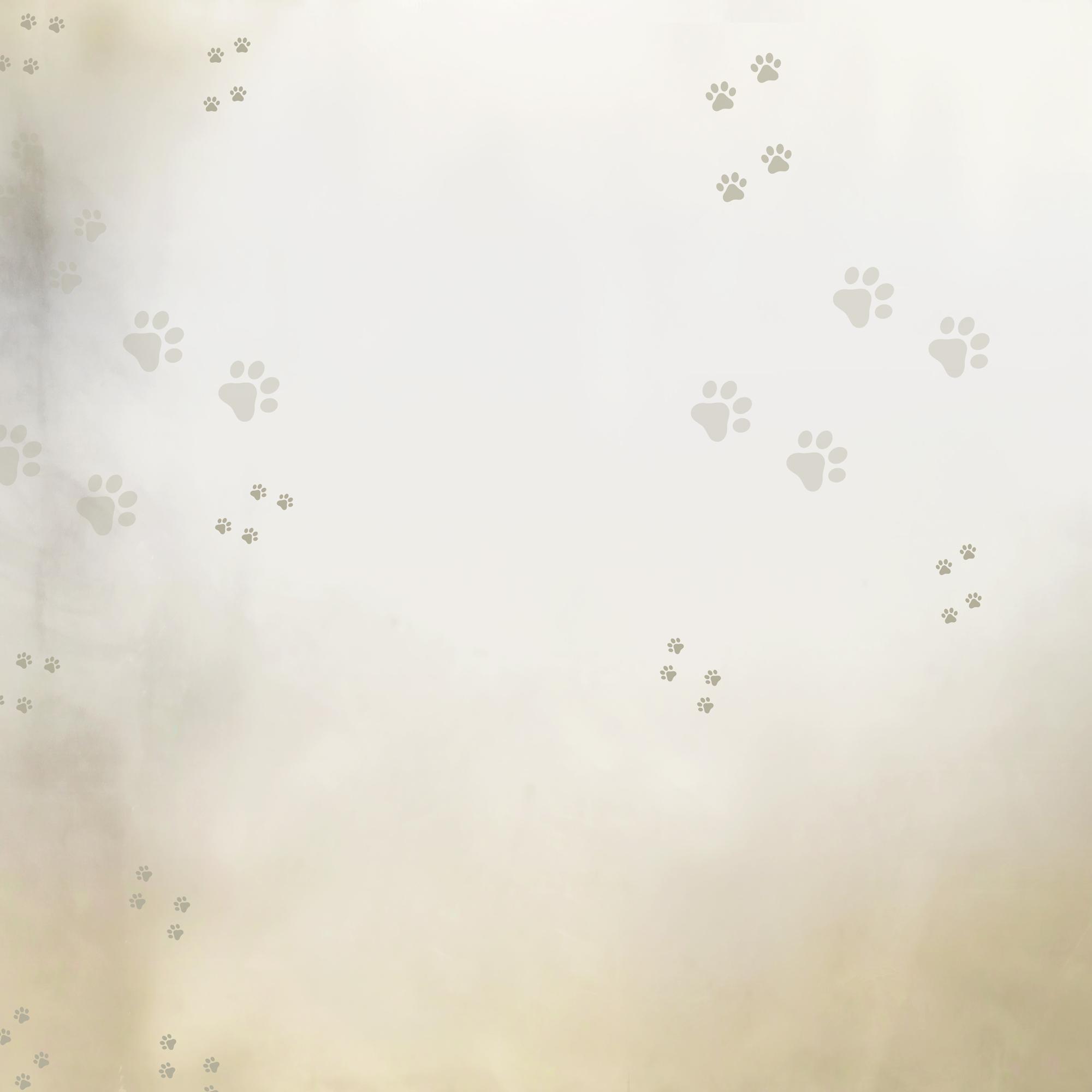 bg_catterymerenga01